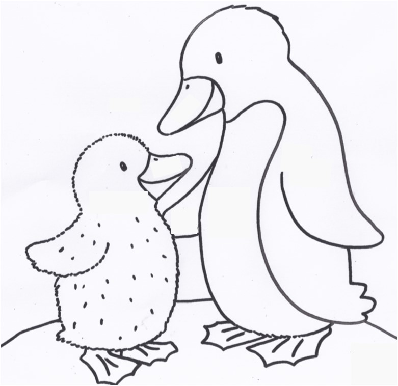 Auswahl-Pinguin